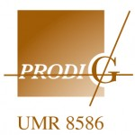Logo_PRODIG_1
